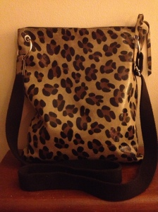 Monday May 11, 2015 Cool bag from TJ Maxx